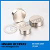 N52 Cylinder NdFeB Magnets