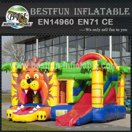 PVC inflatable bouncy slide