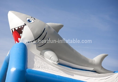Bouncy castle Combo Marine