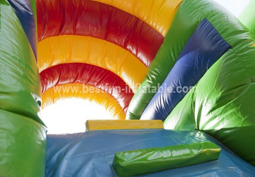 Inflatable Multiplay Lion Bouncy Slide