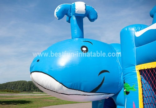 Multiplay Whale Inflatable Combo