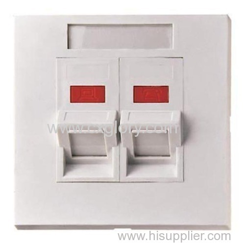 AMP Type Face Plate 45 Degree Angled