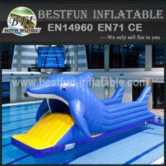 Antique pvc inflatable water park slide