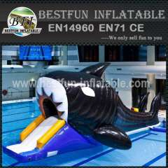 Adult inflatable lake water park games