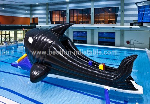Floating water inflatable aquatic toys