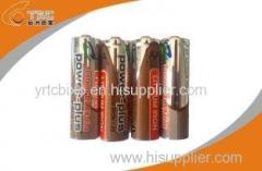Power Plus Band LiFeS2 1.5V 2700 mAh AA / L91 Lithium Iron Battery with Long cycle life