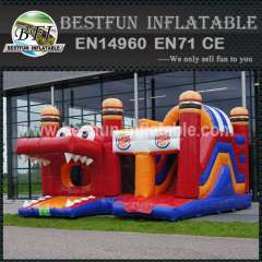 Theme inflatable bouncy combo