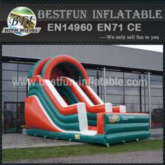 Tropical theme inflatable slides