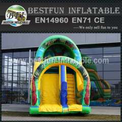 Used inflatable slides for sale