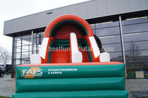 Custom design inflatable slide