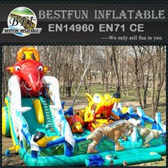 Hot selling inflatable slides