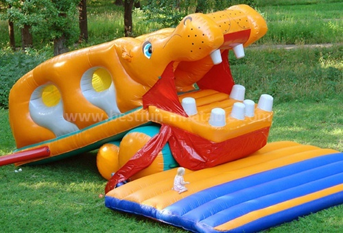 Custom inflatable slide for pool