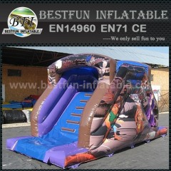Best quality inflatable slide