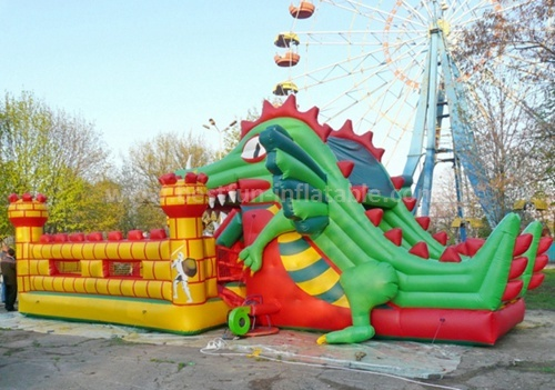 Huge inflatable adult slide