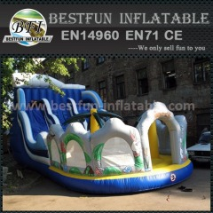 Backyard cheap inflatable slides