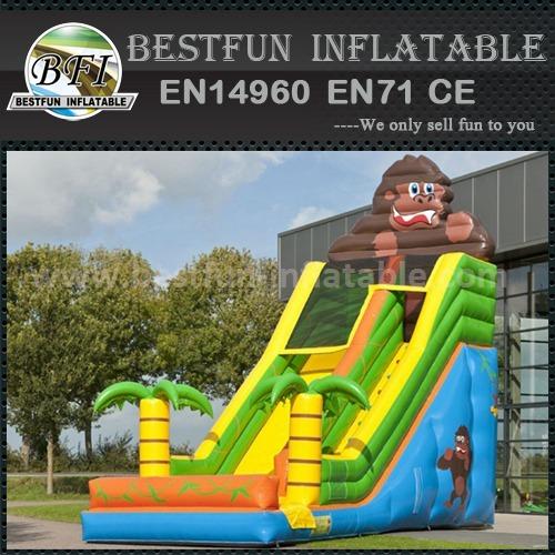 Inflatable custom design slide