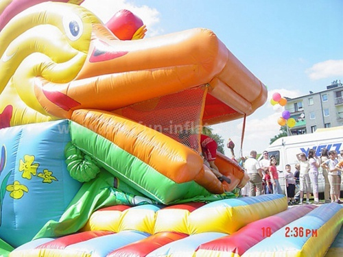 Inflatable duck slide sale
