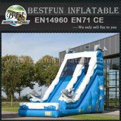 Dolphin inflatable bouncer slide combo