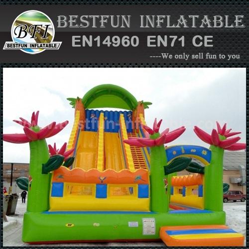 Extreme skate inflatable slide