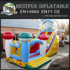 Indoor kids inflatable slide