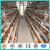 A type design chicken layer cage for Kenya farm