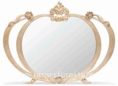 Mirror decoration mirror bath mirror dressing mirror luxury mirror beauty mirror