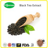 Best price 20%-30%Polyphenols instant black tea extract powder/ black tea extract