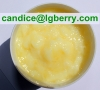 High Quality Royal Jelly Freeze-dried Powder