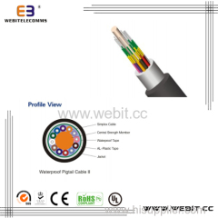 Water proof pigtail cable (LC-D02)
