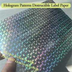 Hologram Destructible Label Sticker Paper Materials