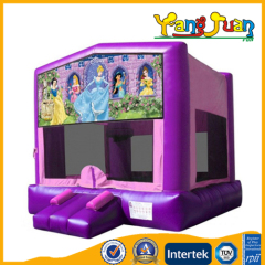Inflatable Bounce Castle Disney Princess