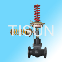 self-operated pressure and differential pressure control valve