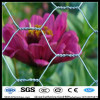 13mm bwg27 Anping hexagonal planting mesh screen