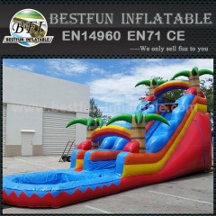 Plam inflatable red slide with water pool