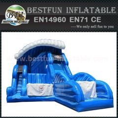 Jumping n Sliding inflatable slide combo