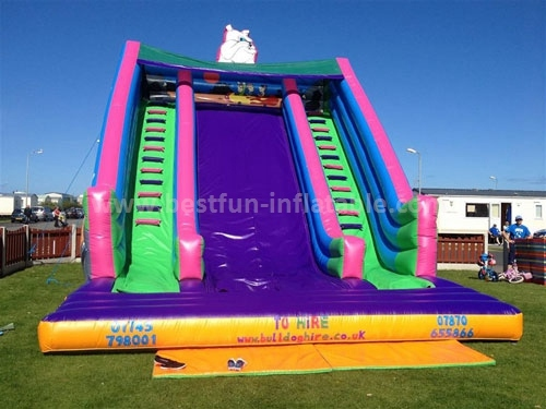 Huge Beautiful Inflatable Slide of China Manufacturer