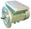 JL High output aluminum housing three-phase asynchronous motor sale /JL High efficiency