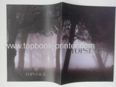 Top-class silver stamping cover saddle stitched landscape photobook printer