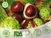 Horse Chestnut Seed Extract(HCSE)