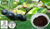 Black Chokeberry Extract;Vitamin C 5% By CP2000, Anthocyanidins 2.5%,20%,25% By UV
