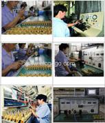 GOGO Automatic Company Ltd.