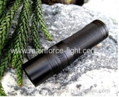 high-power flashlight (120 lumens)
