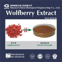 Manufacture Wolfberry Extract goji berry extrac