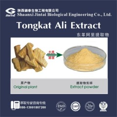 natural Tongkat Ali Extract for man sexual enhancement