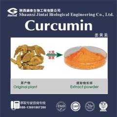 Natural Turmeric Root Extract HPLC 95% Curcumin