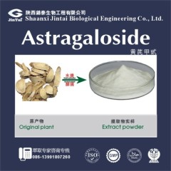 Factory price 5% 10% 20% Astragaloside Astragalus Root Extract