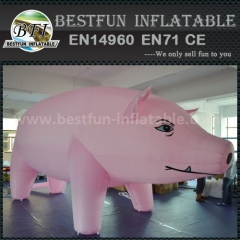 Cute advertising inflatable pig cartoon