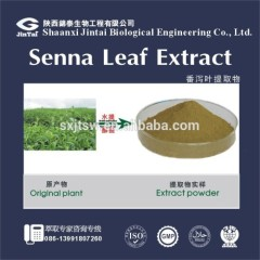 Watersoluble Sennosides A+B 8% 20% 40% Senna Leaf Extract