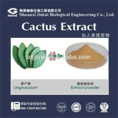 Natural Organic Loss weight efficacy Hoodia Cactus Extract