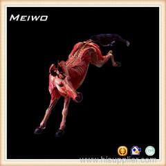 Horse nervous system plastinated specimen for sale